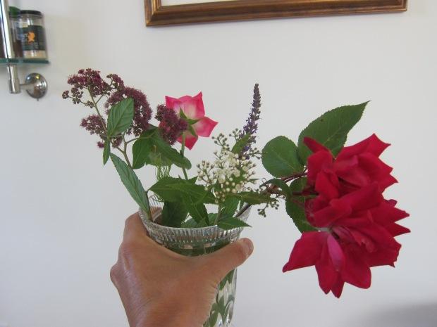 Spring Flower (8)