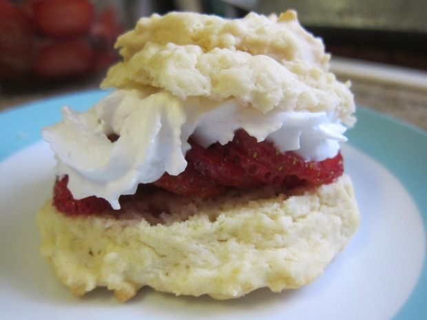 Strawberry Shortcakes (9)