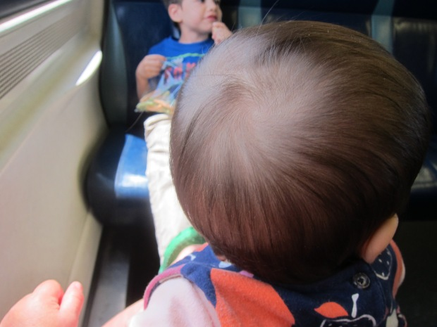 Train Ride (10)