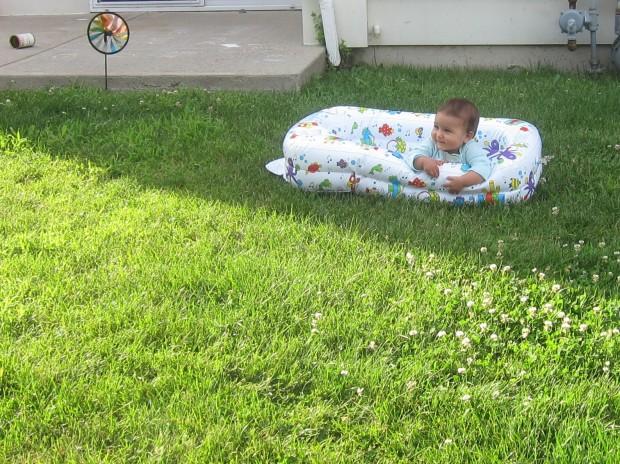 backyard baby.JPG