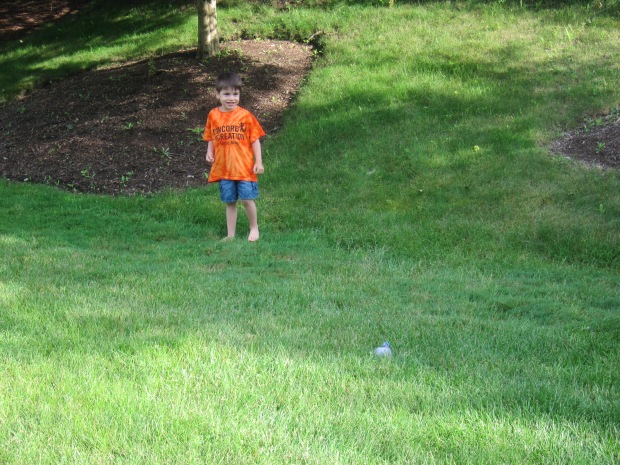Bean Bag Games (16)