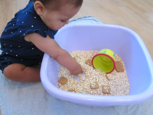 Edible Sandbox (2)