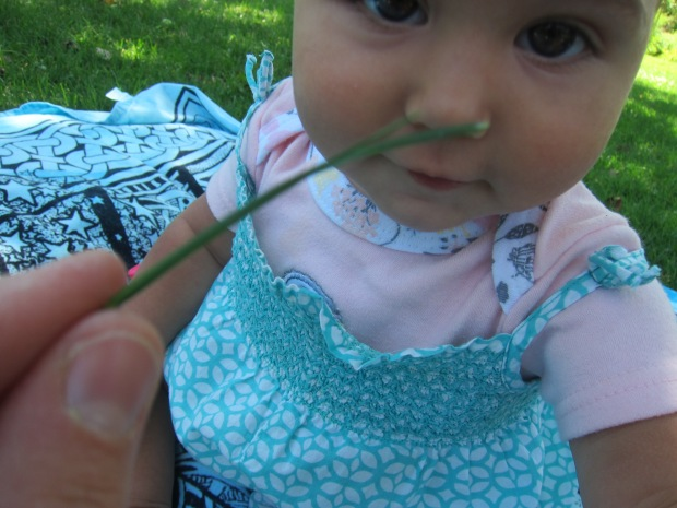 Mood Grass (2)