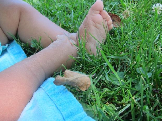 Mood Grass (5)