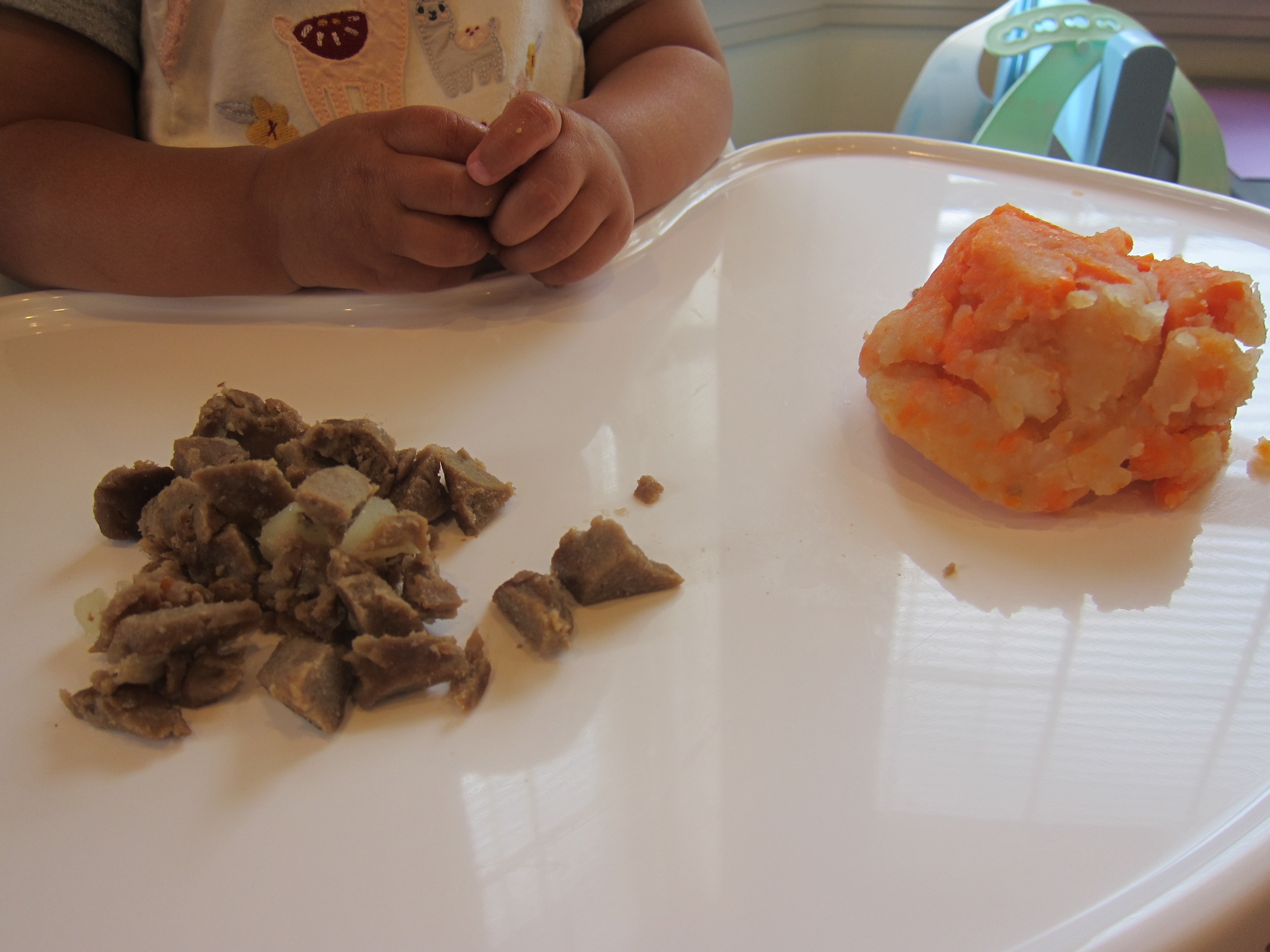 Baby Beef Stew (1)