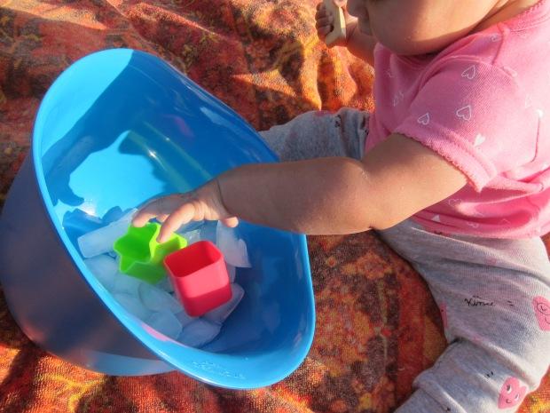 Baby Ice (2)
