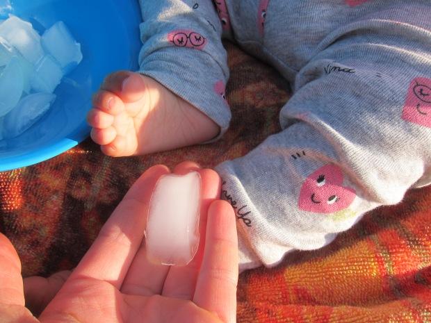 Baby Ice (3)