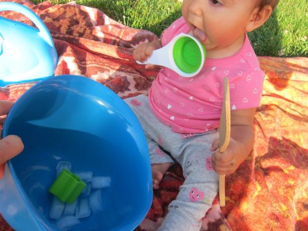 Baby Ice (5)
