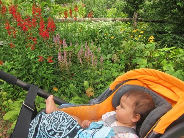 Botanical Garden (2)