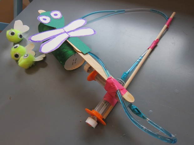 Dragonfly Fishing (9)