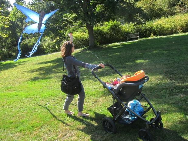 Fly a Kite (6)