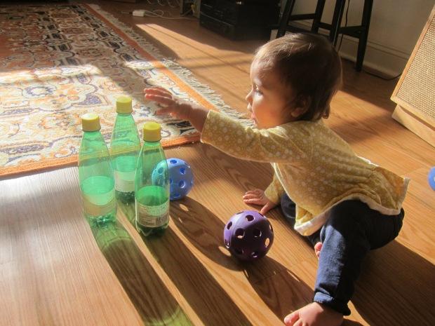 Bowl Bottles (1)