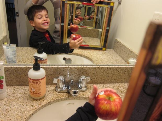 Kiwi Mirrors (19)