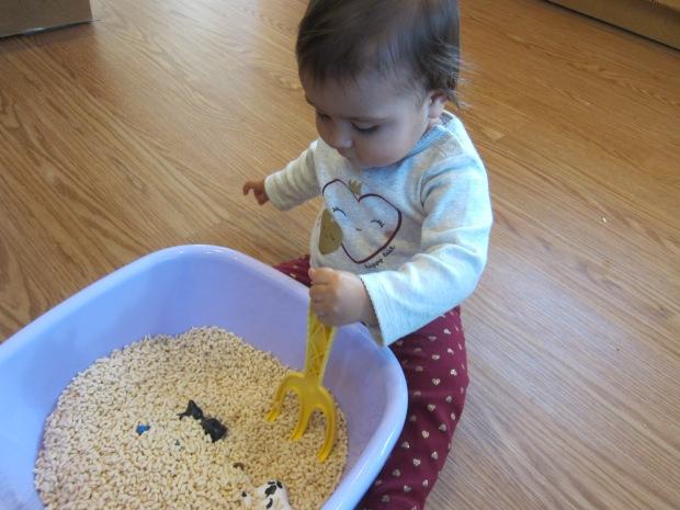 Rice Cereal Sensory (4)