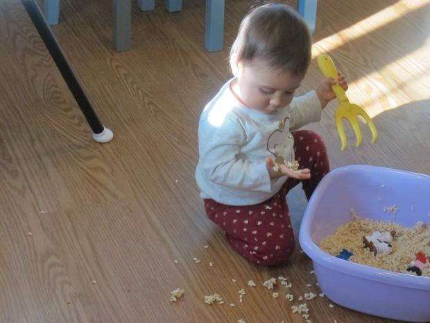 Rice Cereal Sensory (9)