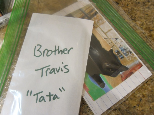 Family Flash Cards (5)