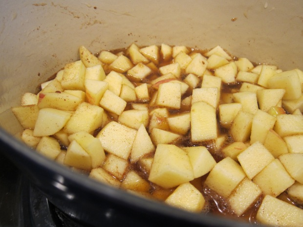 Homemade Applesauce (2)