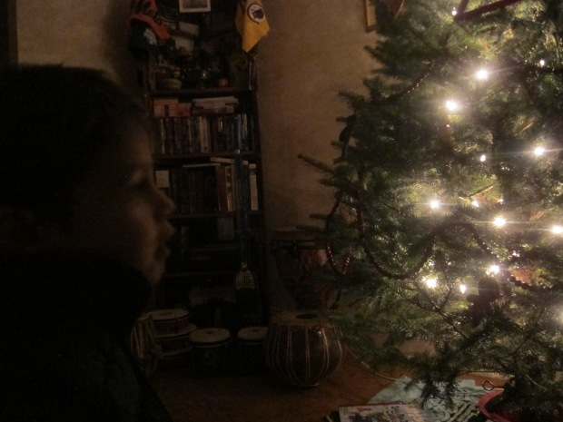 I Spy Ornament (2)