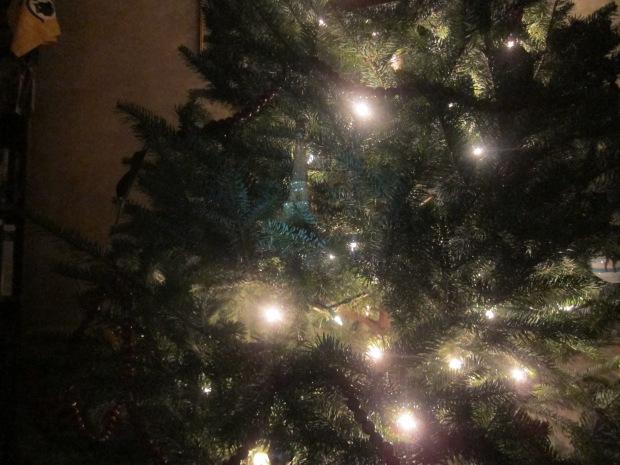 I Spy Ornament (3)