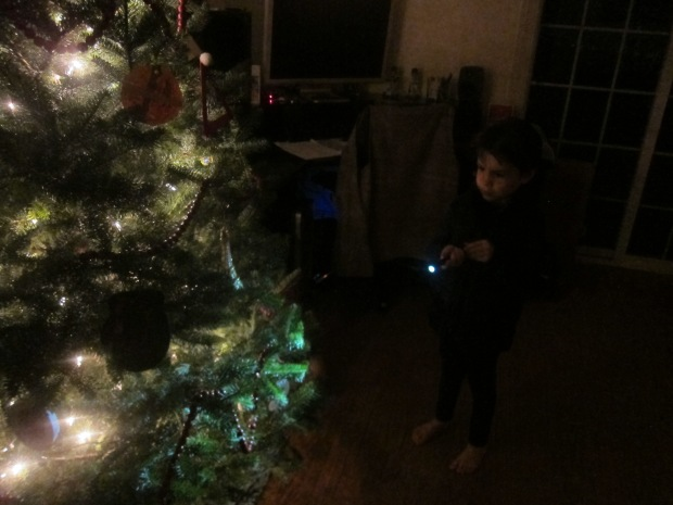 I Spy Ornament (5)