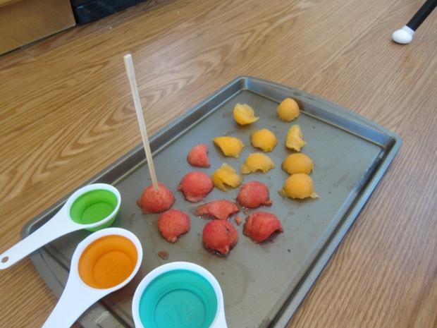 Melon Sensory (1)