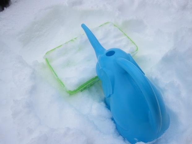 Snow Fort (3)