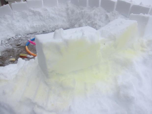 Snow Fort (f)