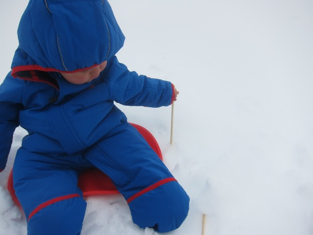 Take a Sled Ride (3)