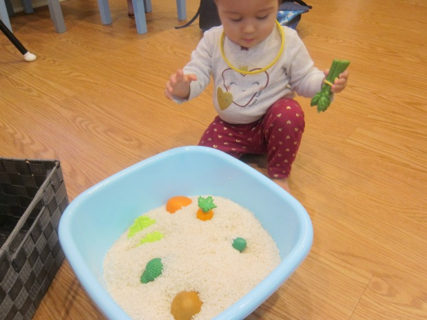 Toys in Rice (2)