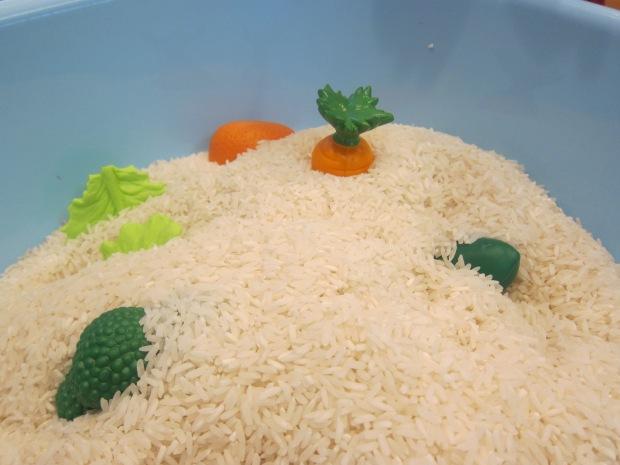 Toys in Rice (3)