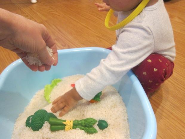 Toys in Rice (4).JPG