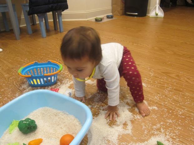 Toys in Rice (5)