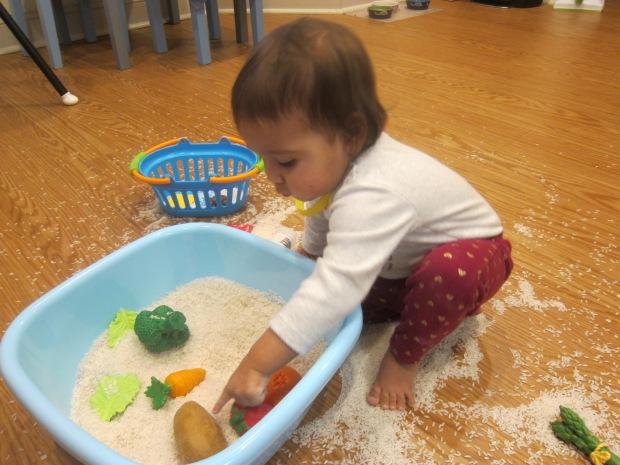 Toys in Rice (6)