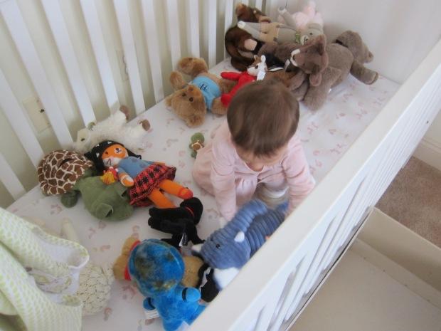 Bear in Basket (8)