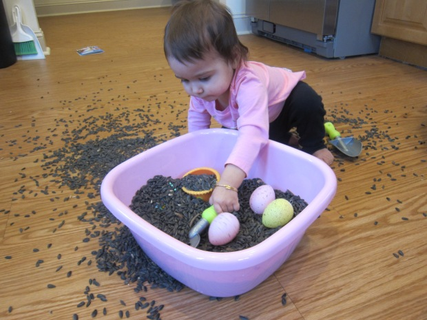 Birdseed Sandbox (6)