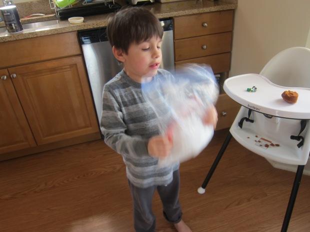 Ice Cream Snowballs (3)