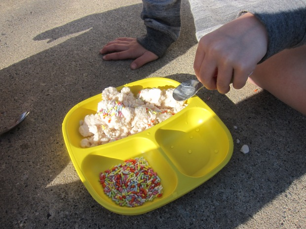 Ice Cream Snowballs (8)