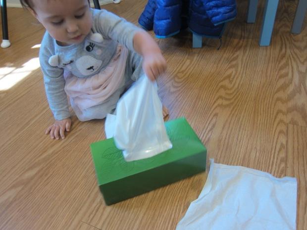 Kleenex Box (1)
