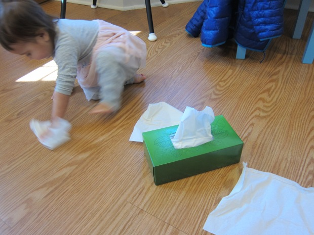 Kleenex Box (2)