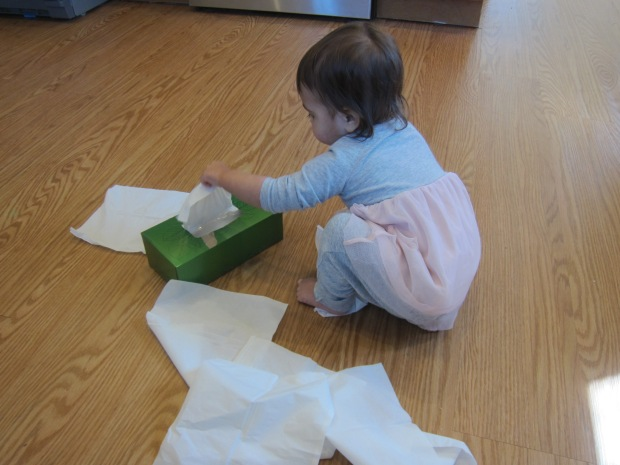 Kleenex Box (3)