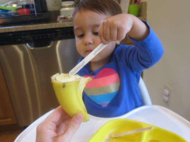 Bananas Wheat Germ (1)
