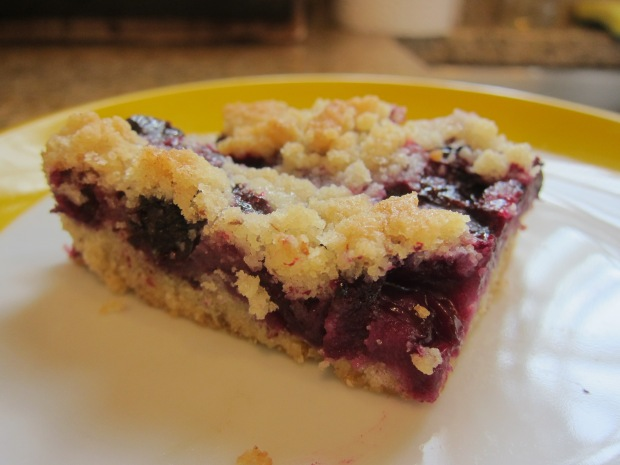 Bluesberry Bars (7)