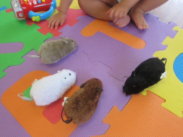 Five Little Mice (5)