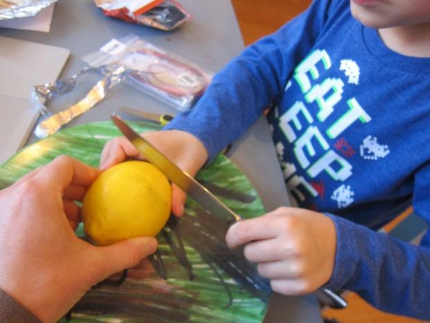 Lemon Battery (2)