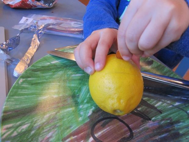Lemon Battery (3)