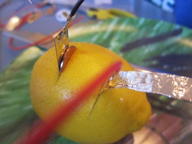 Lemon Battery (5)