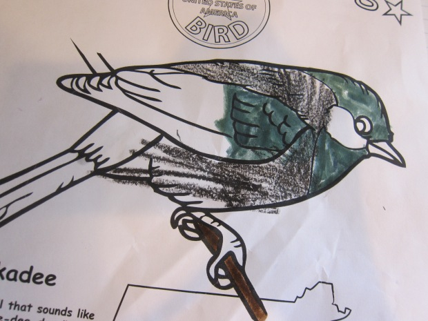 National Draw Bird