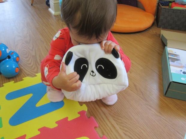 Panda Explore (10)