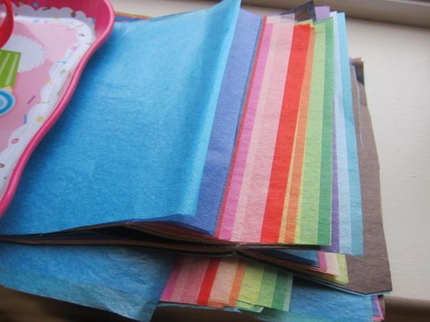 Tissue Paper Bag (1)