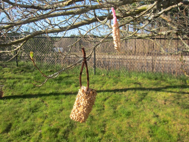 Easy Bird Feeder (11)